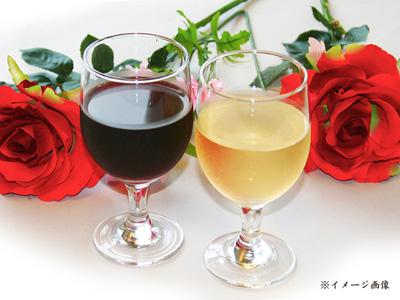 お祝いプラン能登ワインイメージ