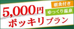 5,000円ぽっきりプラン
